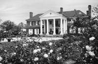 Boone Hall Plantation Arcadia_200.jpg