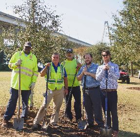 Town staff plants a tree to celebrate Arbor Day